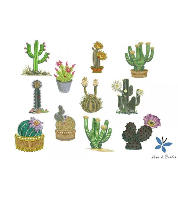 Cactus 001