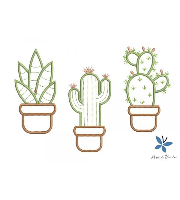 Cactus 005