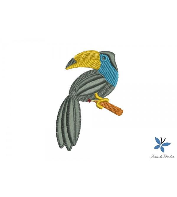Toucan 002