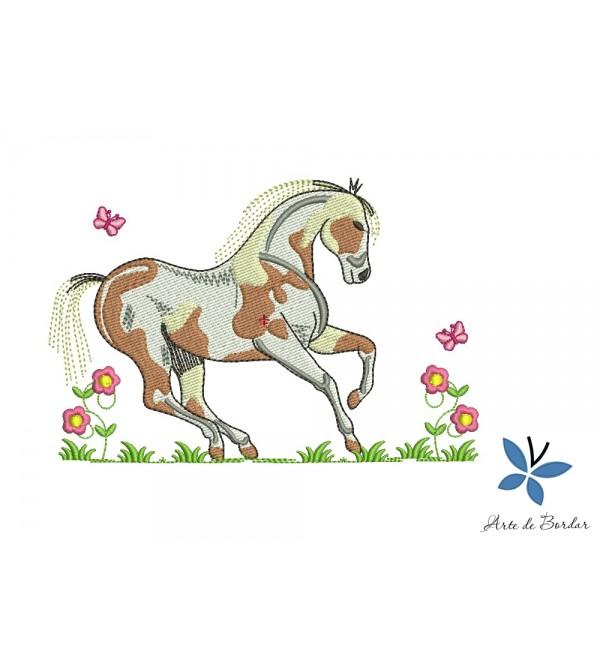 Horse 019