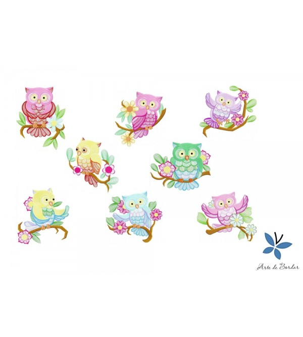 Owl Collection 002