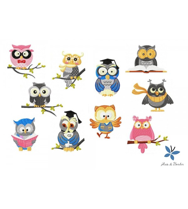Owl Collection 004