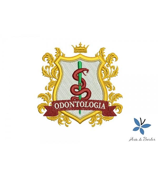 Odontology 013