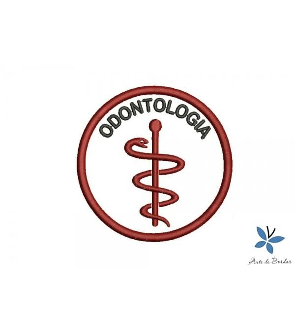 Odontology 017